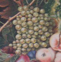 dettaglio-grappolo-d'uva-corsi-di-pittura
