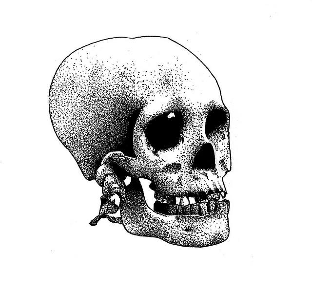 Come disegnare un teschio – Paul Alexander Thornton