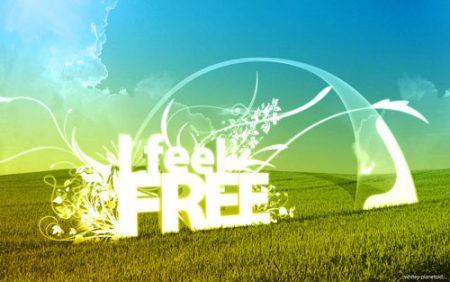 sfondi-desktop-i_feel_free_by_whitey_plane