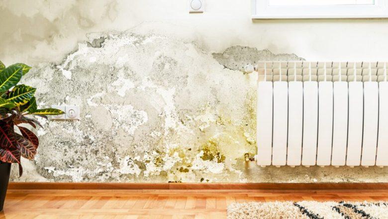 pittura-anti-umidità-1