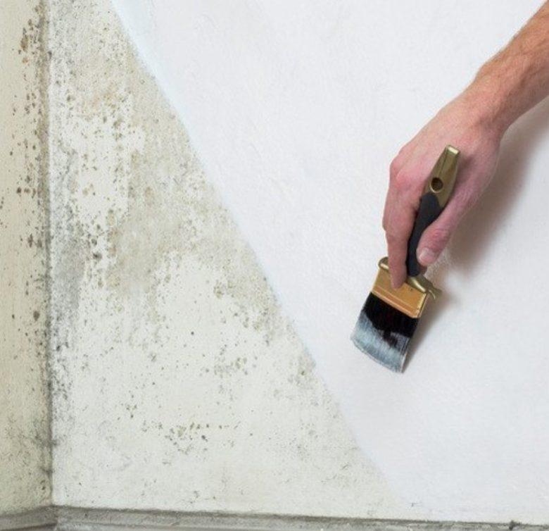 pittura-anti-umidità-4