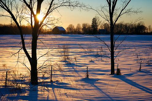 25 Bellissime immagini dell'inverno
