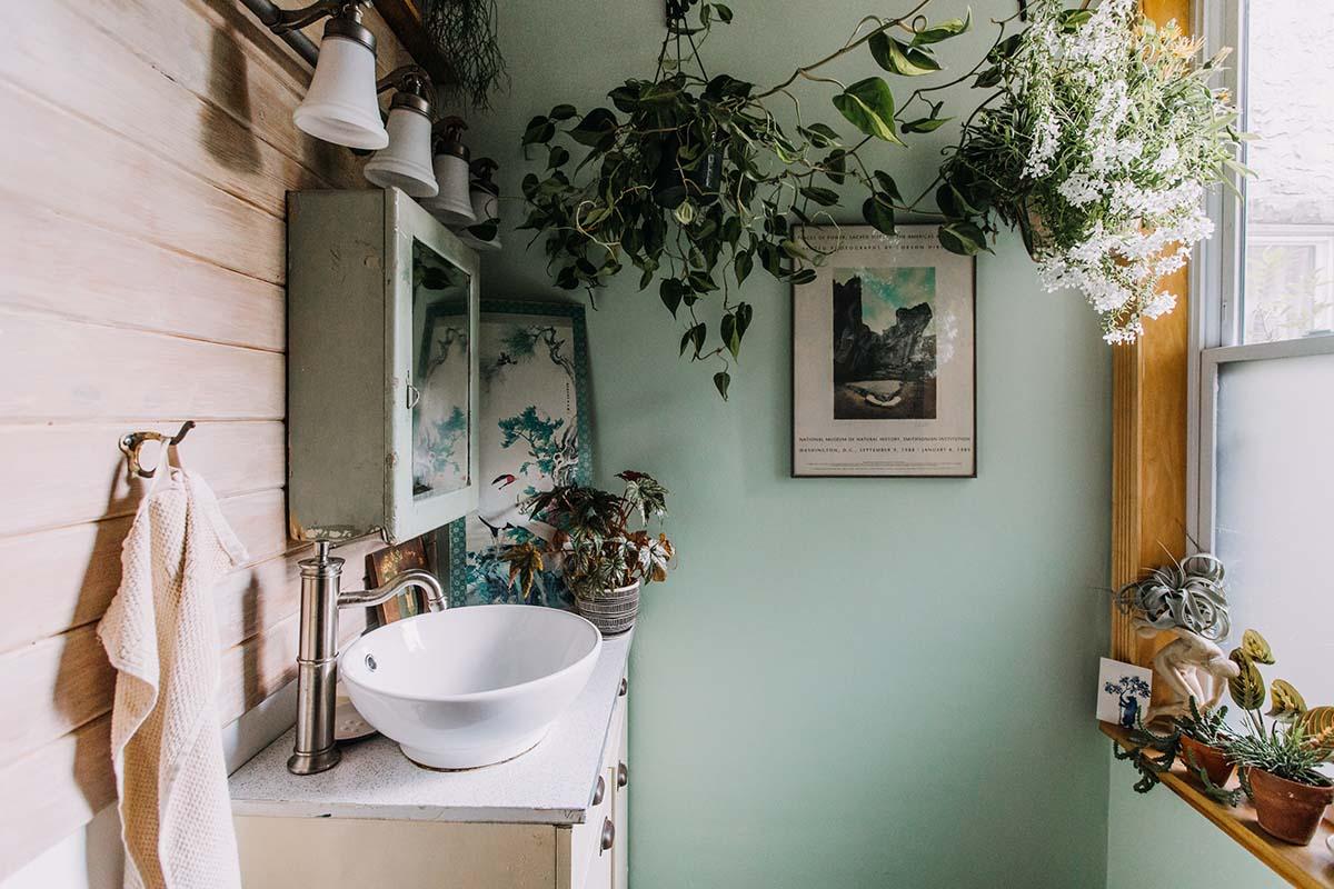 10-piante-ideali-per-il-bagno