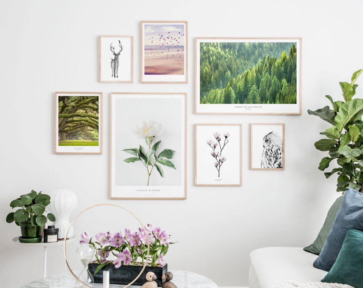 Come decorare una parete con foto, stampe e cornici