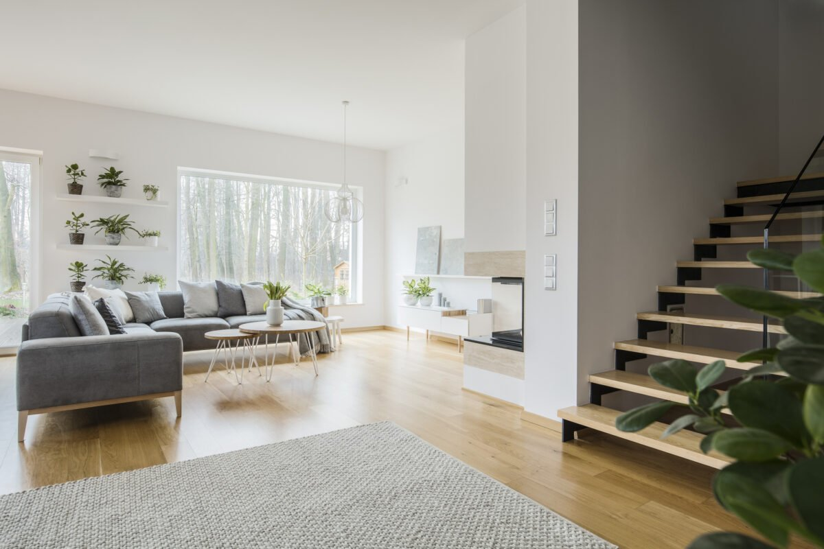 White living room interior with grey corner couch, green fresh plants, carpet on the floor and wooden stairs