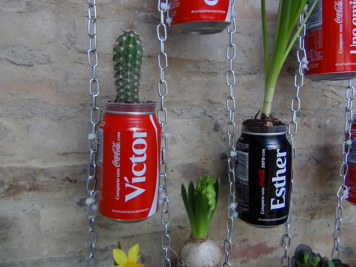 lattine-piante