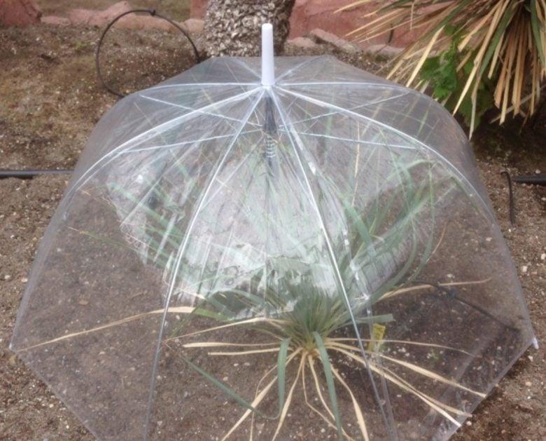 riciclare-ombrello-idee-1