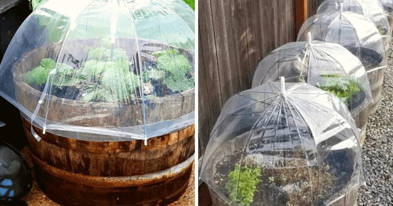 riciclare-ombrello-idee-foto-2