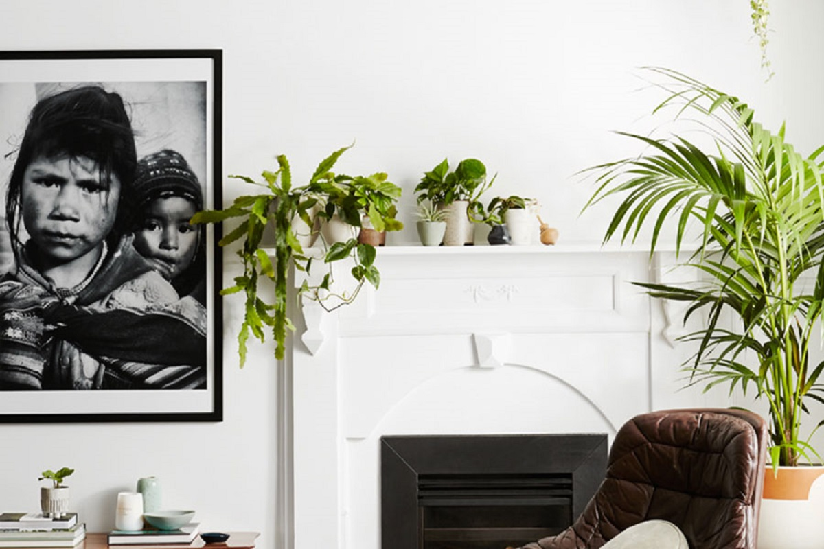Feature-Ivy-Muse-Autumn-Plant-Care-Hunting-for-George-Day7Daylesford_10